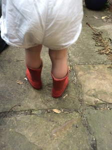 Toddler with wellies in garden