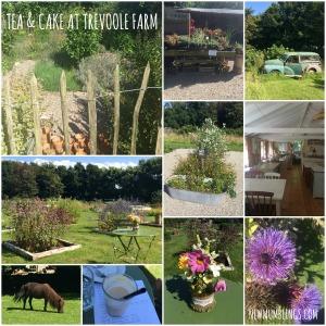 Trevoole Farm Collage