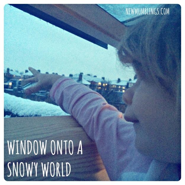 VELUX window in snow